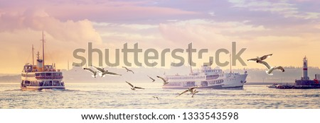 Panorama of Istanbul in the morning haze - steamships and silhouettes of mosques with minarets on horizon. Ancient oriental town in pastel colors. Passenger ships and gulls in the Kadikoy sea port.