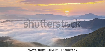 panorama of misty morning in the mountains at the summer