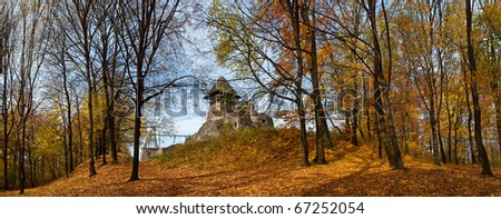 Panorama of old castle in autumn forest
