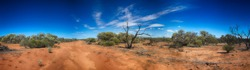 Panorama of Outback Track in Western Australia