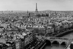 Panorama of Paris with Eiffel tower on the background. View from Cathedral Notre Dame de Paris. France. Black and white.