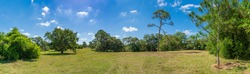 Panorama of Pine Island Ridge Natural Area - Davie, Florida, USA