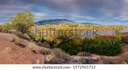 Panorama of Sandia Mountains, Bosque, and Rio Grande from Rio Rancho Bosque Preserve - Albuquerque  Сток-фото ©