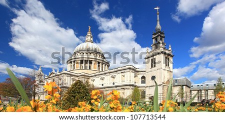 Panorama of St. Paul Cathedral with Yellow Flower garden in London England United Kingdom