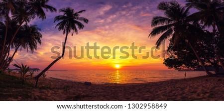 Panorama of Sunset at sea shore #1302958849