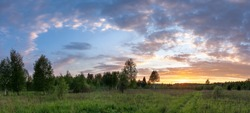 Panorama of sunset landscape of summer meadow with green grass in evening twilight under blue sky with clouds in bright sunset light, colorful panoramic view of field in sunset dusk with trees