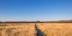 Panorama of the gravel path  in the Noordsche Veld nature reserve, Netherlands