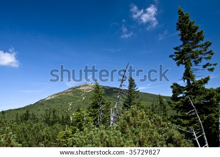 Panorama of The Krkonose Mts. National Park-Czech Republic/Europe