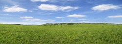 panorama of the prairie in spring