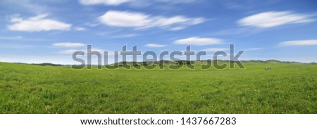 Photo of  panorama of the prairie in spring