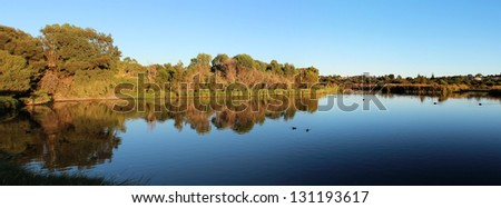 Panorama of the Reflections in the early morning light  Lake  at Big Swamp, Bunbury, western Australia, as the  sun rises  over the eastern horizon.