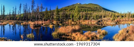 Panorama of the river valley in the mountains. Mountain water panorama. Mountain valley panoramic landscape. Mountain panorama