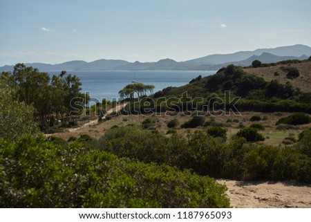 Panorama of the Sardinian coast with its typical vegetation and the Mediterranean vegetation that reaches the sea. #1187965093