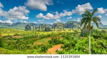 Panorama of Viñales mountains, Cuba Foto stock ©