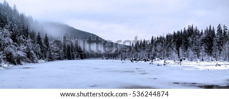 panorama of winter landscape at Buntzen Lake, Anmore, Port Moody, BC, Canada