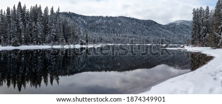Panorama of Wintry Forest in Mountain Lake Foto stock ©