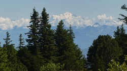 Panorama on Mont Blanc seen from the Jura Mountains. Snow-capped peaks stand out against the sky. Low clouds. Mountain, hills and green valley. Spruce trees. Landscape between France and Swit