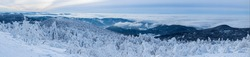 panorama photo of a snowy landscape in the black forest in Germany , summit Hornisgrinde