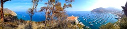 Panorama Shot of Santa Catalina Island Avalon California