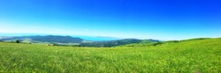Panorama summer flower meadow in the mountains, tourism. Beautiful sea view landscape. Fresh green rural meadows on a sunny day with blue sky. Scenery view ocean