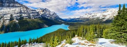 Panorama View from Bow Summit of Peyto lake in, Canada