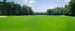 Panorama view of Golf Course with fairway in Chiba Prefecture, Japan. Golf course with a rich green turf beautiful scenery.