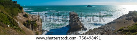 Panorama view of Muriwai Beach #758498491
