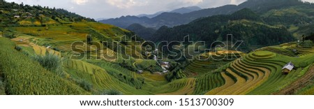 Panorama viewpoint terraced rice fields It looks like a helicopter landing. at Mu Cang Chai in Vietnam. #1513700309