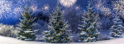 Panorama Winter landscape with Christmas trees covered with snow against the backdrop of festive firework salute. Celebrating New Year or Christmas, panoramic view
