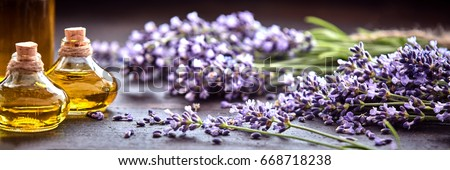 Panoramic banner or header of fresh purple lavender with flacons of essential oil for aromatherapy, alternate medicine and perfumery #668718238