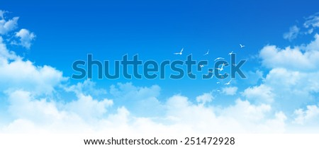 Panoramic cloudscape. High resolution blue sky background. White clouds and birds composition in daylight