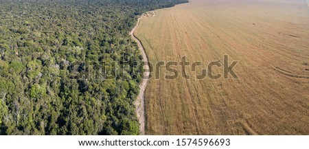 Panoramic drone aerial view of Xingu Indigenous Park territory and soybean farms in the Amazon rainforest, Mato Grosso, Brazil. Concept of deforestation, agriculture, global warming and environment.