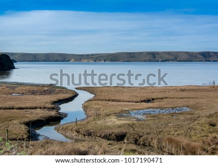 Panoramic landscape of an estuary viewed from the Estero Trail, Point Reyes National Seashore, Marin County, California, USA,  on a sunny day at low tide