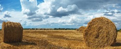 Panoramic landscape with straw bales in farm field after harvesting time on a background of dark dramatic clouds in overcast sky.