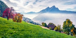 Panoramic morning view of outskirts of  Stansstad town, Switzerland, Europe. Foggy autumn scene of  Lucerne lake. Attractive landscape of Swiss Alps. Traveling concept background.
