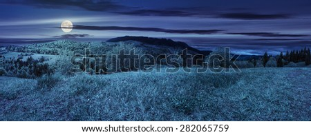 panoramic mountain landscape. green grass on meadow near mixed forest in mountains at night in full moon light