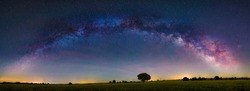 Panoramic Night Astrophotography: The Milky Way and the Tree, Guadalajara countryside, Spain.