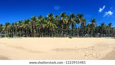 Panoramic of beach in Philippines  #1223955481