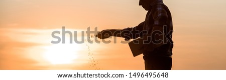 panoramic shot of farmer sowing seeds during sunset  Photo stock ©