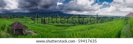 Panoramic shot of rice terraces in Balinese mountains
