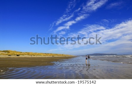 Panoramic summer shot of New Zealand beach with copy space