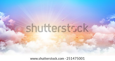 Panoramic sunrise. High resolution morning sky background. Rising sun and birds breaking through white clouds Stockfoto ©