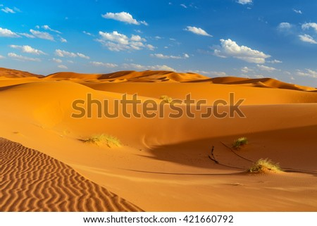 panoramic view at dunes of erfoud in morocco