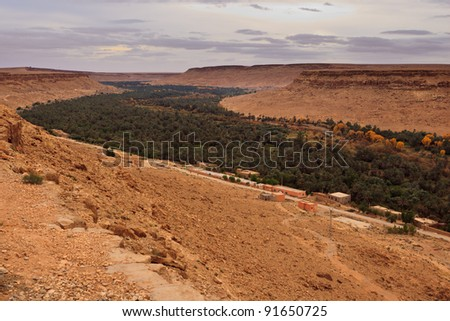 Panoramic view of a fertile valley and oasis in Sahara Desert, Morocco, Africa