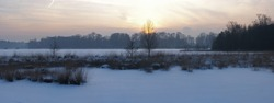panoramic view of a Frozen pond in the moorlands during a very tough winter in the north of Belgium