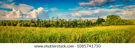 Panoramic view of a meadow at sunset. Rural landscape. Panorama
