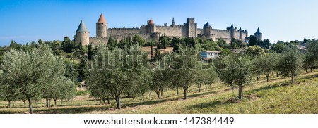 Panoramic view of a olive tree field with the ancient city of Carcassonne on the background, south of France