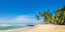 Panoramic view of a wild tropical beach in southern part of Sri Lanka in sunny day.