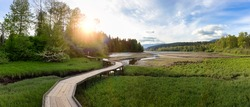 Panoramic View of a Wooden Path across a swamp in Shoreline Trail, Port Moody, Greater Vancouver, British Columbia, Canada. Trail in a Modern City during a Sunny Evening. Nature Background Panorama