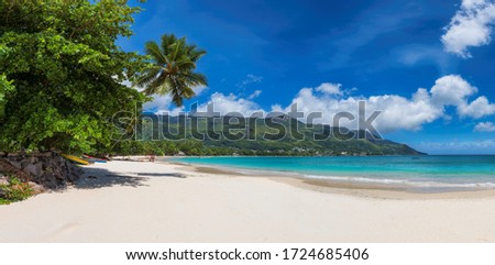 Panoramic view of amazing Anse Beau Vallon beach with coconut palm trees on Mahe island, Seychelles. Photo stock ©